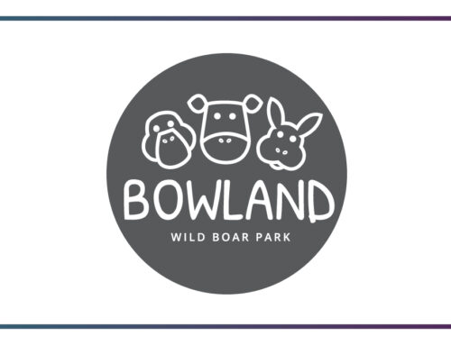 Bowland Wild Boar and Animal Park